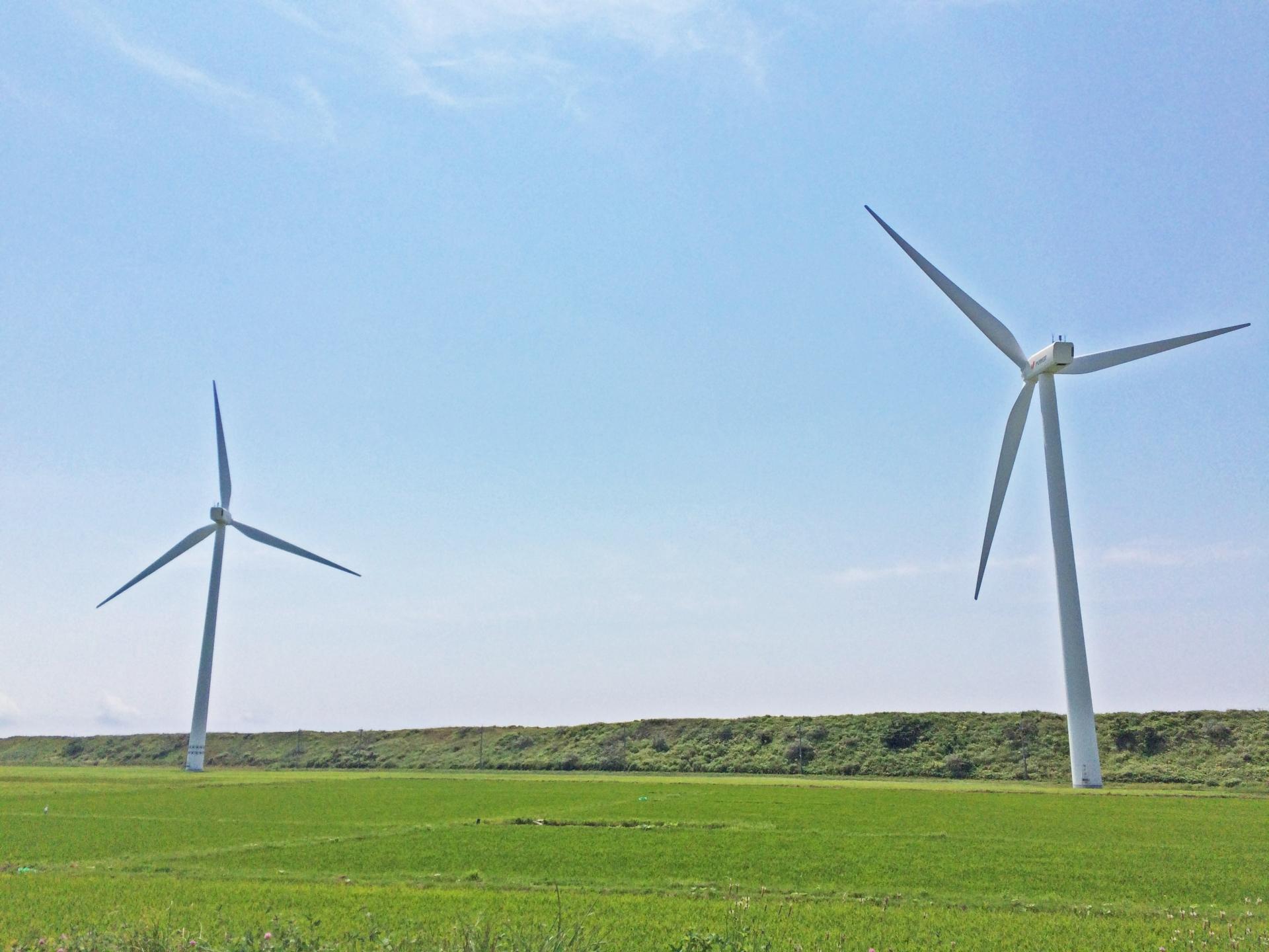 田の中にある瀬棚臨海風力発電所